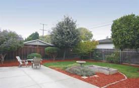 parkwood -Backyard 2