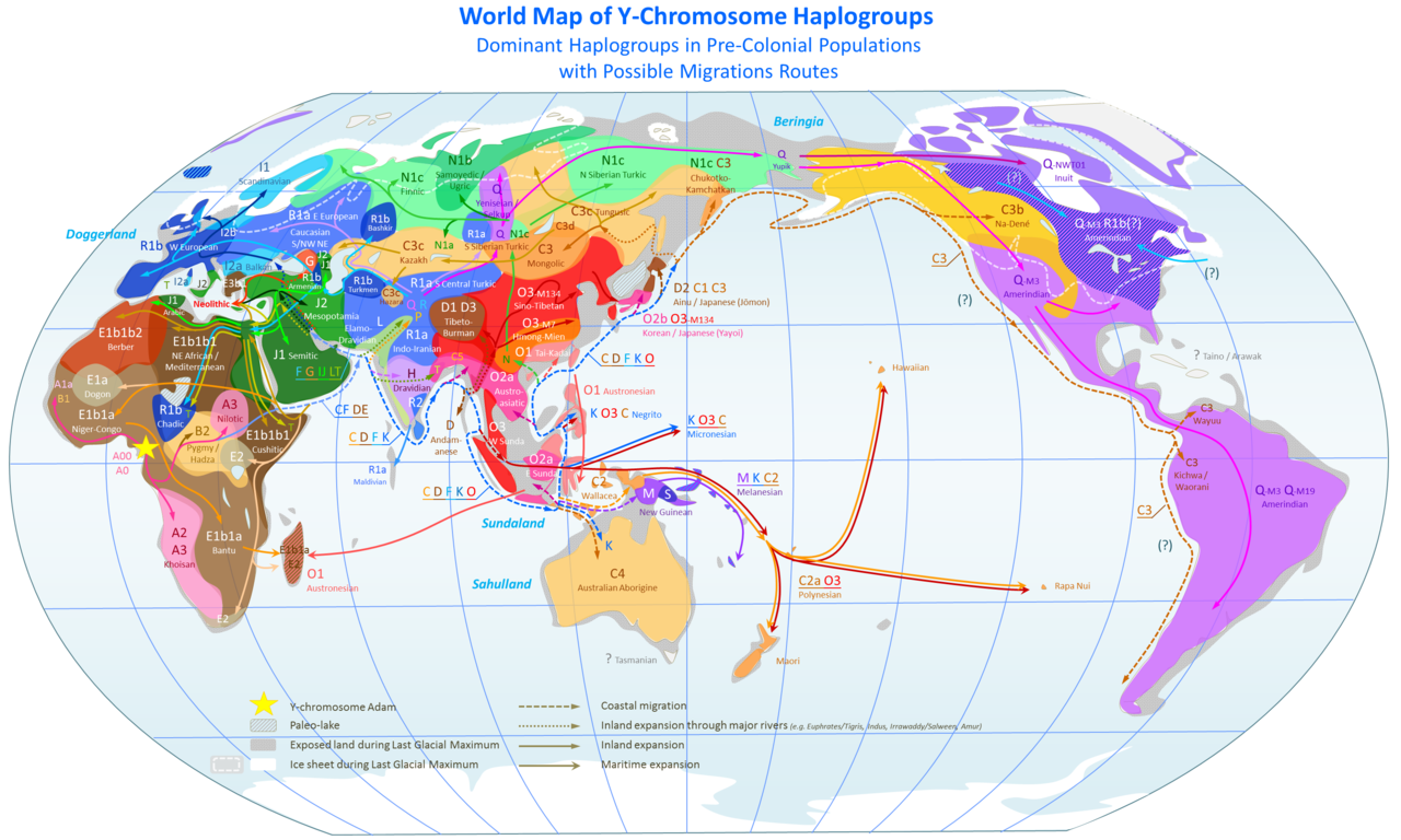 World Map of Y-DNA Haplogroups